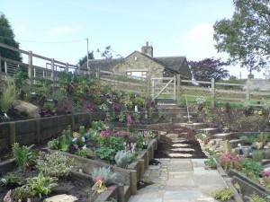 cottage-garden-1c