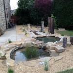Pond Garden after