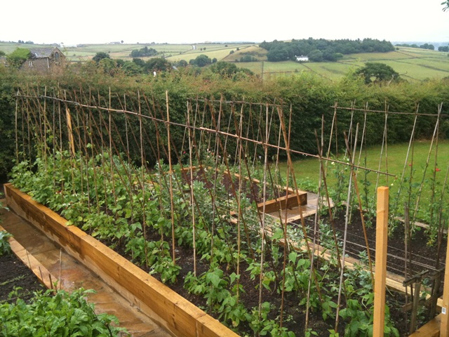 Vegetable and Kitchen Gardens